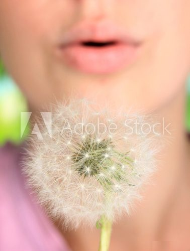 Girl blowing on dandelion close up  Dmuchawce Fototapeta
