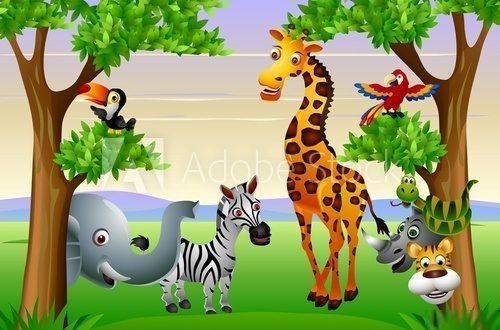 Nie Dzikie Zwierzęta Afryki Plakaty Dla Dzieci Do Pokoju