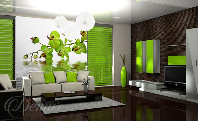 orchidea w salonie do salonu fototapety demur. Black Bedroom Furniture Sets. Home Design Ideas