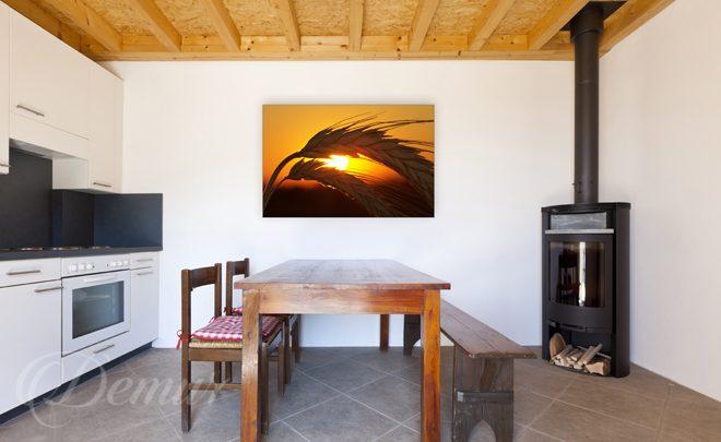Źdźbła zbóż  do kuchni  Obrazy  Demur -> Kuchnia Wloska Obrazy